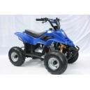 Petrol powered 110cc mini quad bike with reverse